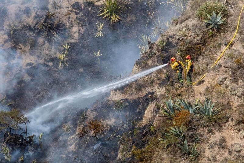 El fuego se ha propagado rápidamente en los matorrales de altas pendientes, lo que ha sido obstáculo para combatir las llamas.