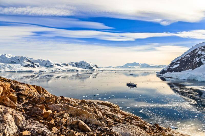 El turismo, el tránsito marítimo y la investigación científica son algunas de las actividades humanas que han facilitado la dispersión de estos organismos.