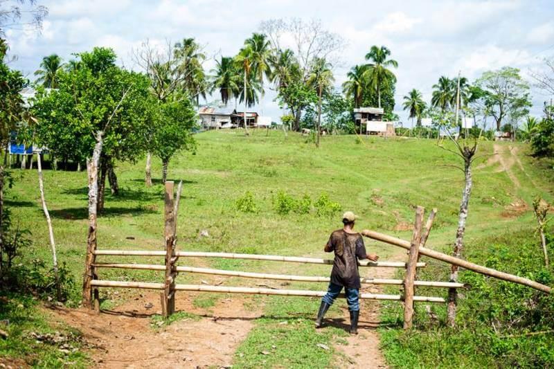 Empresas de extracción de madera ya han invadido unas 140 comunidades miskitu y mayangna