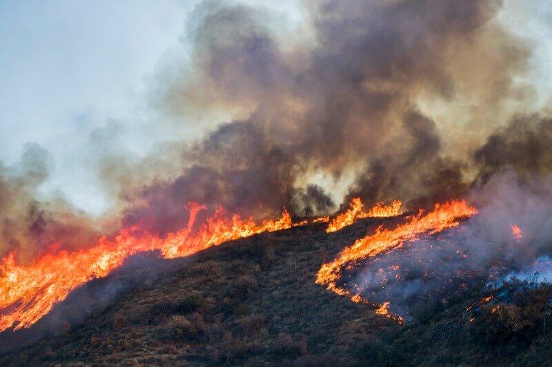 Cuatro comunas se encuentran bajo Alerta Roja por incendios forestales en La Araucanía. Los siniestros se desarrollaron en cercanías a lugares habitados.