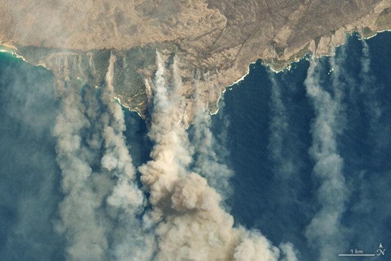 Los incidentes del año pasado en la Amazonía, Indonesia y el Círculo Polar Ártico desencadenaron consecuencias ambientales y económicas del cambio climático.