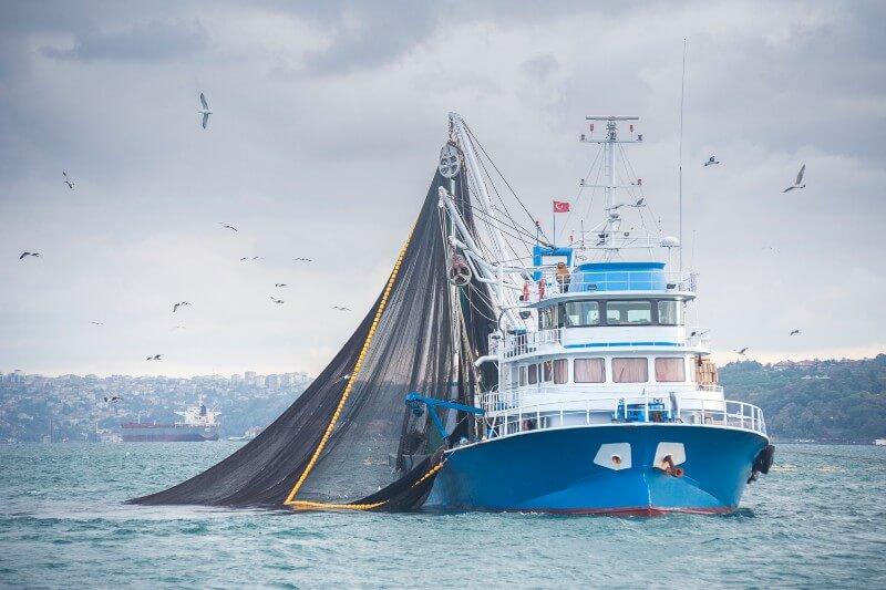 Pesca comprometida por el calentamiento del océano