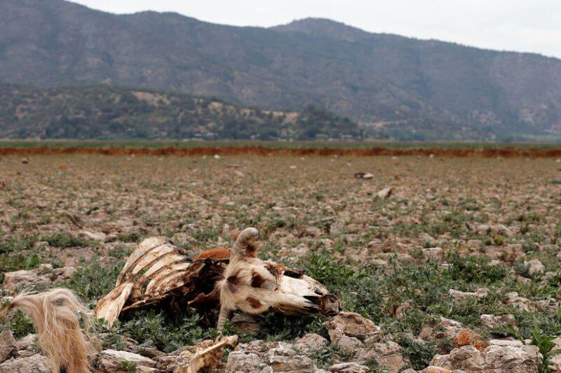Desde hace ya varios años, el país afronta una gran sequía. Sin embargo, el sector eléctrico ha permanecido indemne a esta crisis.