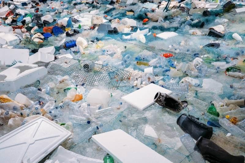 Bacteria que come plástico