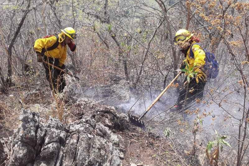 Incrementan los incendios forestales en las áreas protegidas de Guatemala