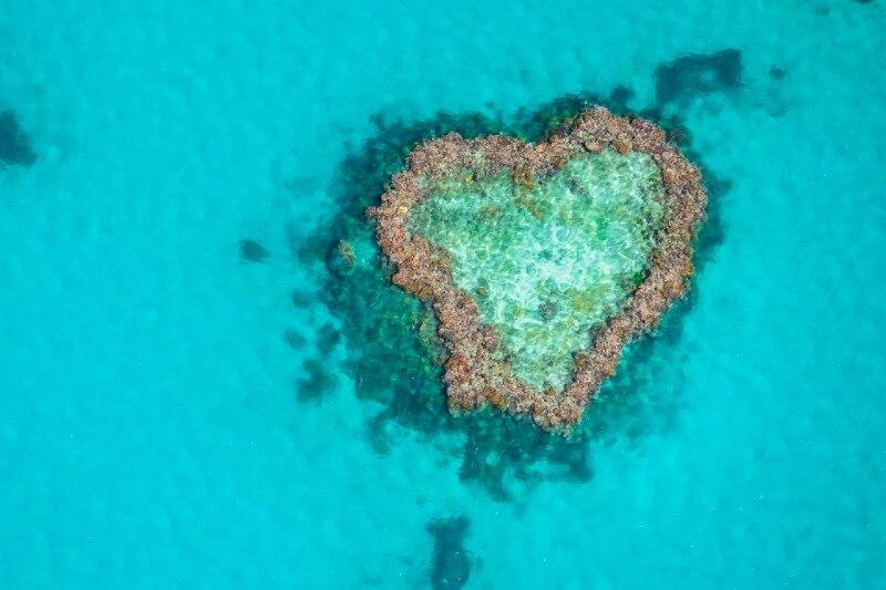 Estas son las maravillas naturales que están en riesgo por la crisis climática