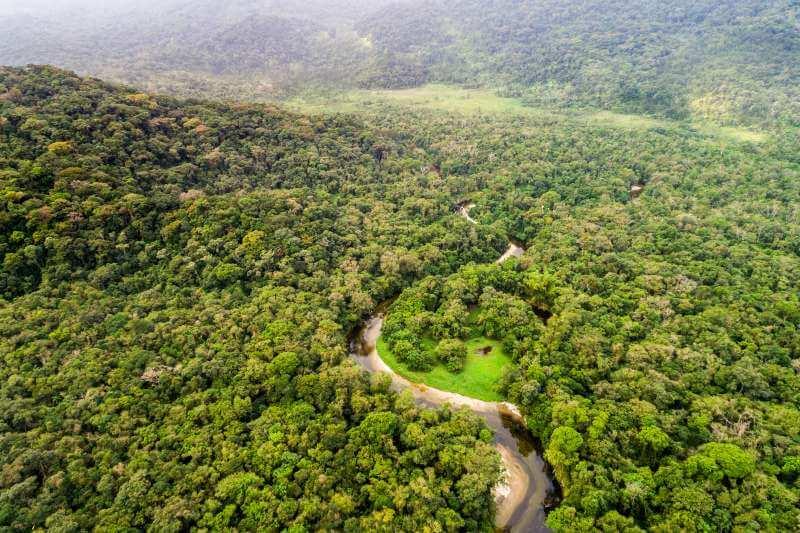 Mitad del planeta como reserva natural
