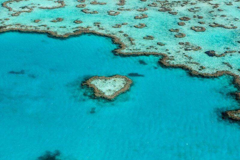 Océanos podrían restaurarse para 2050