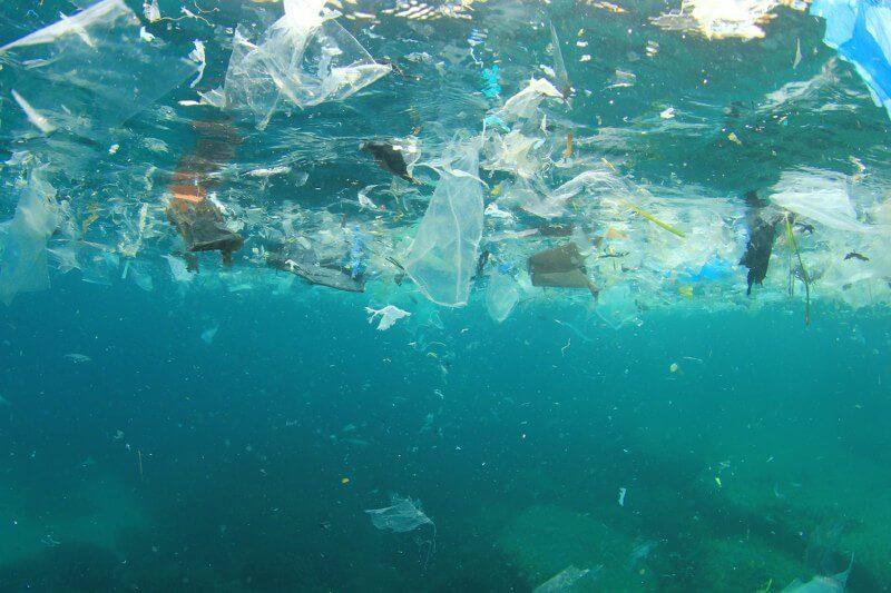 Encuentran grandes cantidades de microplástico en el fondo marino