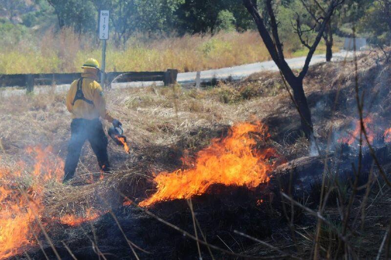 Incendios forestales aumentan en México
