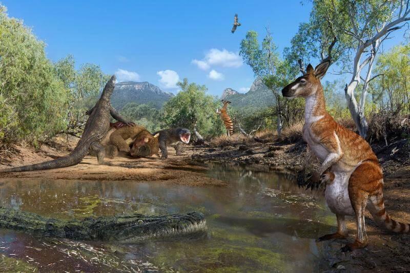 Megafauna en Australia extinta por el cambio climático