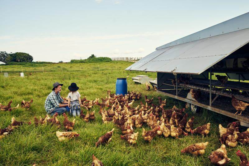 Agricultura orgánica podría ser una solución a la crisis alimentaria