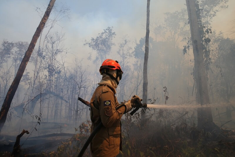 Incendios forestales en Amazonía aumentan riesgo de infecciones por coronavirus