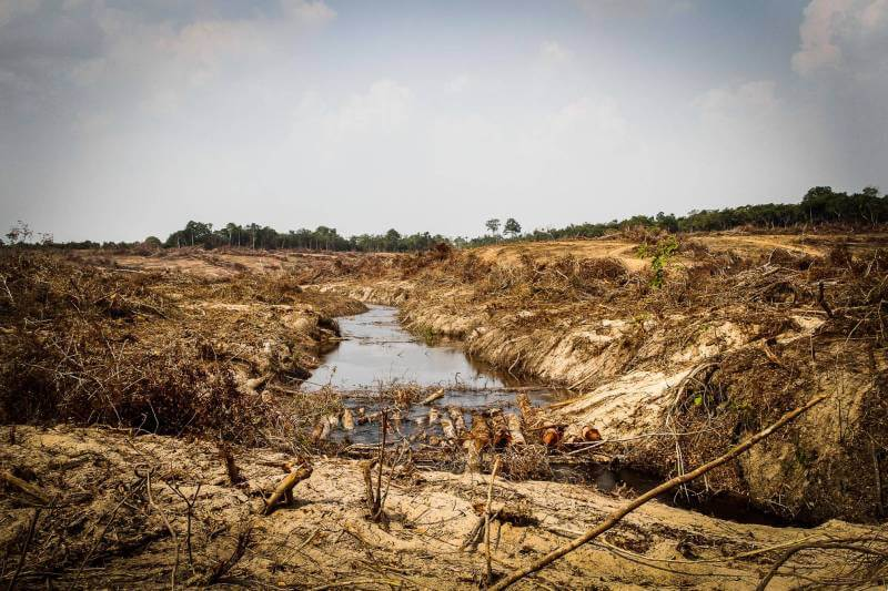 Río en la Amazonía se extingue por minería e hidroeléctricas