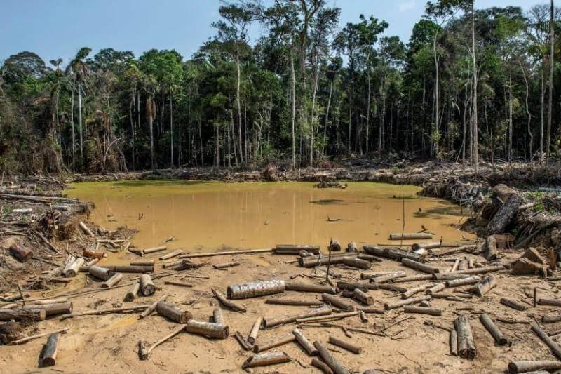 Más de 158 mil hectáreas deforestadas en Colombia