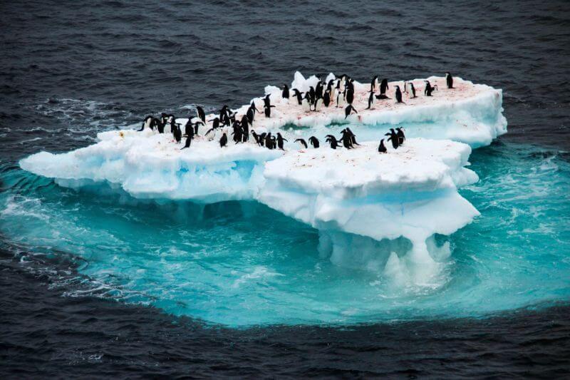 Polo Sur se está derritiendo tres veces más rápido que el resto del planeta