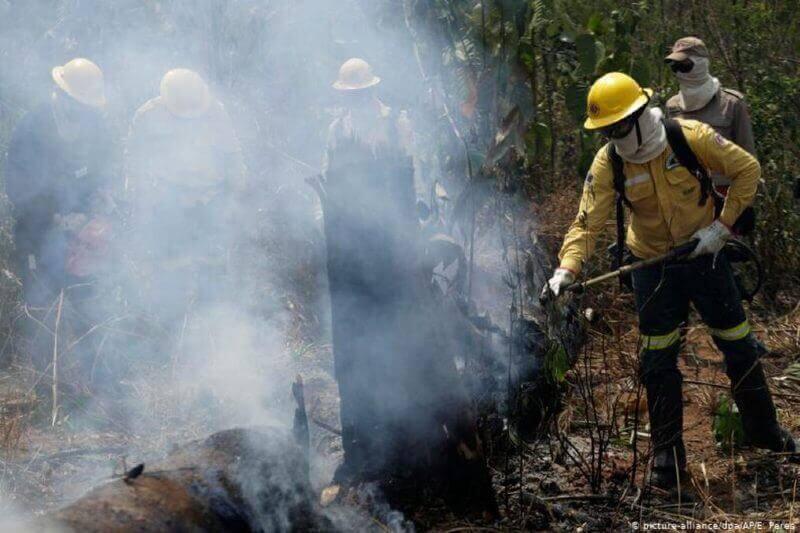 Bolsonaro niega incendios forestales en la Amazonía