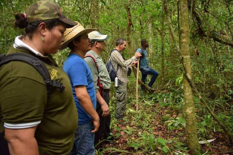 Defensores de la Selva luchan por proteger sus tierras en Guatemala
