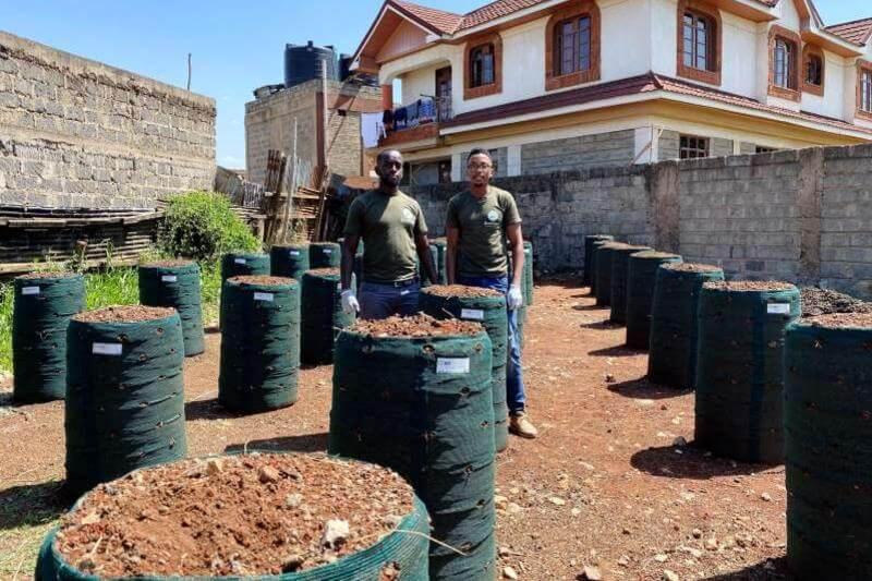 Empresa reciclaje impulsa agricultura urbana con los desechos de la cocina
