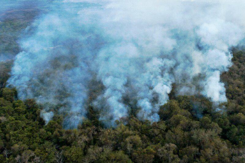 Incendios en los humedales más grandes del mundo se han triplicado
