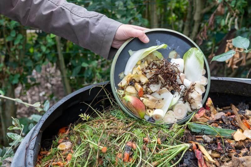 12 cosas que no debes agregar a tu compostaje