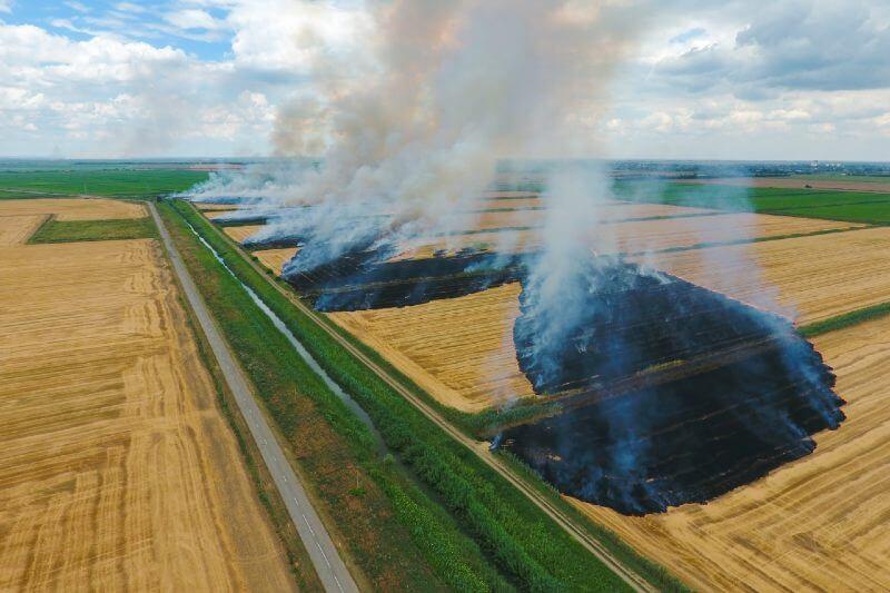 Cuánto afectan las quemas agrícolas al medio ambiente