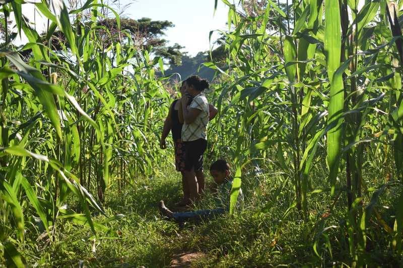 Equidad de género y cambio climático en Honduras