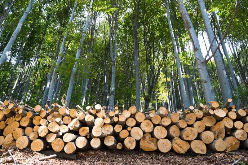 Fraudes ambientales en la UE