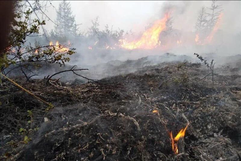Incendios forestales en Siberia emiten 35% más CO que el 2019