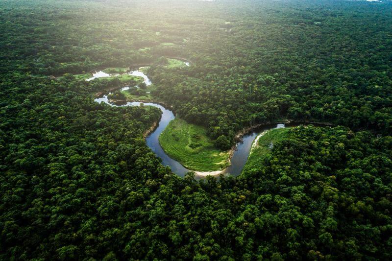 NASA califica la calidad ecológica de los bosques tropicales