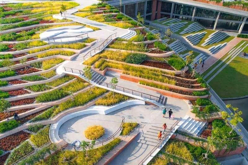 Universidad convierte techos en huertos urbanos