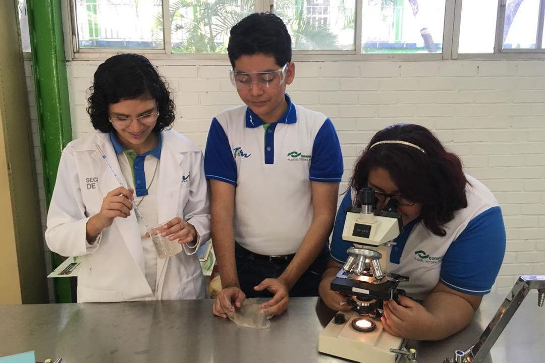 Estudiantes en México crean un nuevo tipo de bioplástico