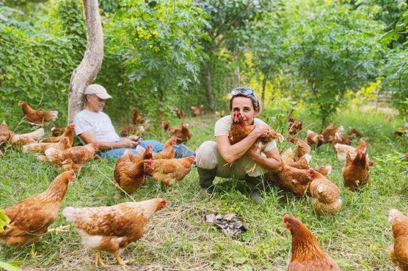 La granja del Mercadito de Lola, un concepto de la agricultura sostenible