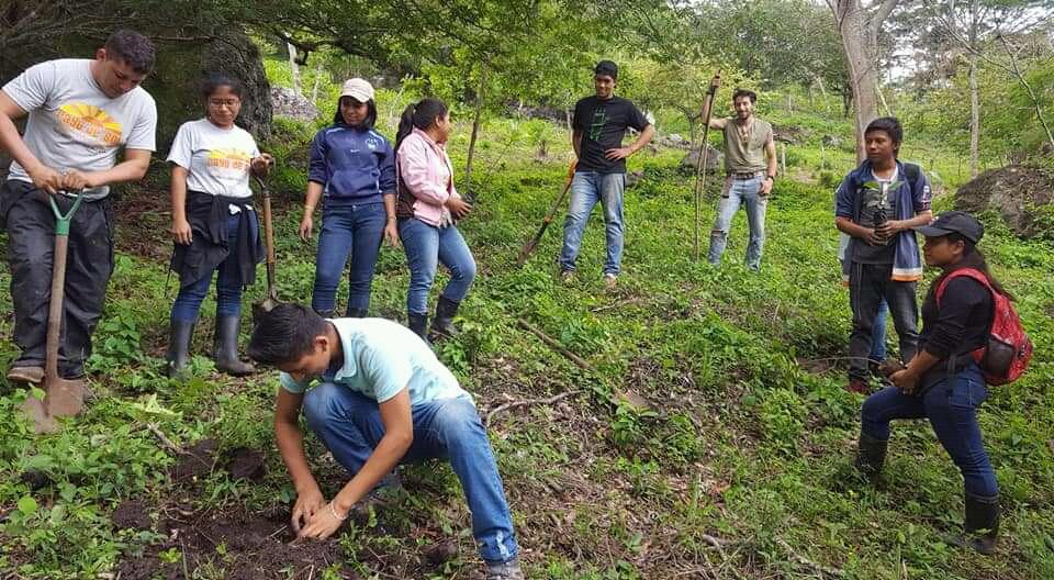 Equipo de MEMA en jornada de reforestación - Foto por MEMA