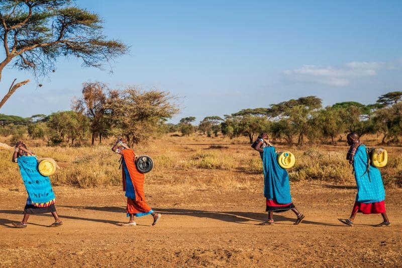 Ecosistemas del 20% de los países en el mundo están en riesgo del colapso