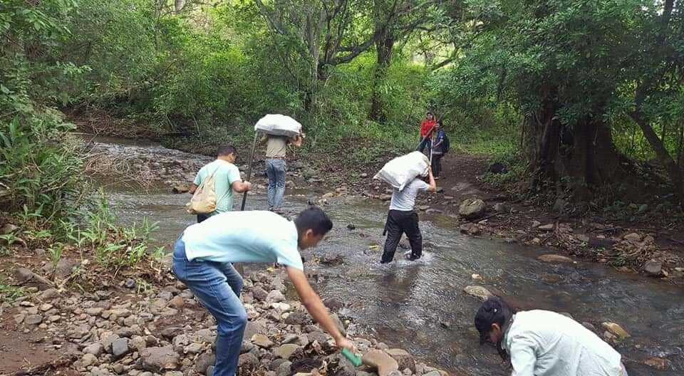 MEMA transportando materiales para reforestación. - Foto por MEMA