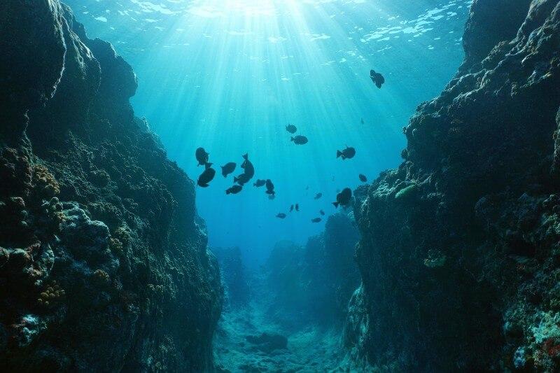 Terremotos submarinos ayudan a medir la temperatura del océano