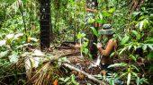 Urge un refuerzo en la protección de turberas en Perú
