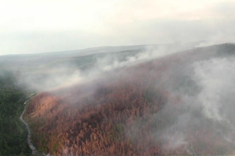 Calentamiento del Ártico vinculado a incendios forestales en Siberia