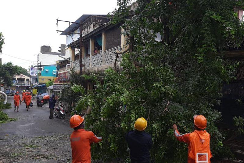 Ciclón Nivar causa estragos en la India