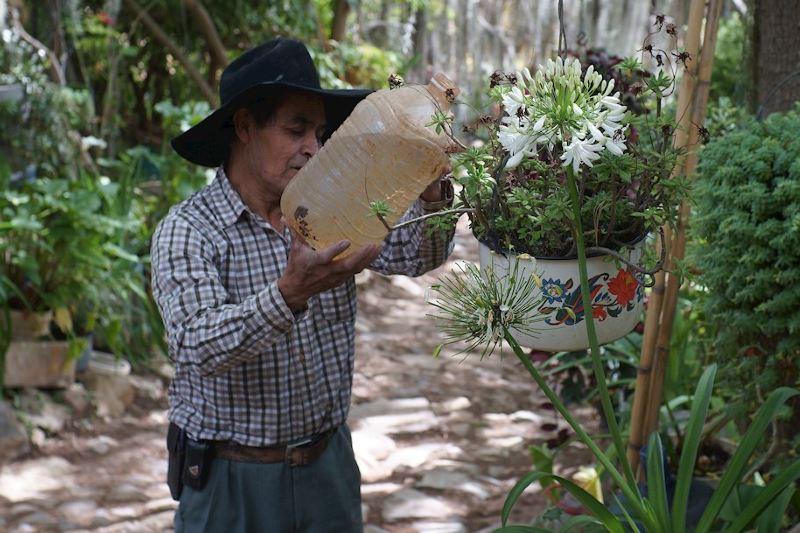Comunidad rescata municipio desertficado en México