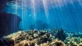Calentamiento de océanos baten récords en 2020
