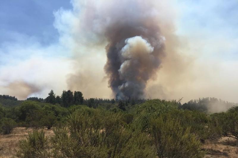 Incendio forestal en chile consume más de 4,200 hectáreas