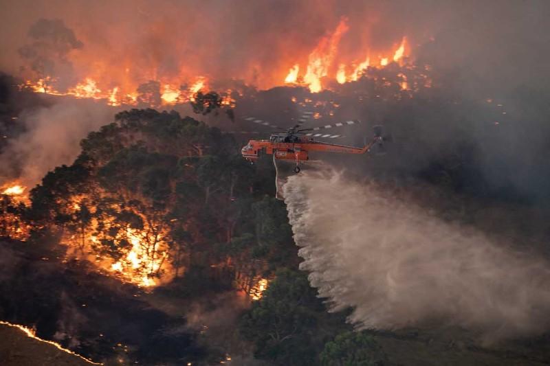 Australia: artículo aclara desinformación de incendios forestales