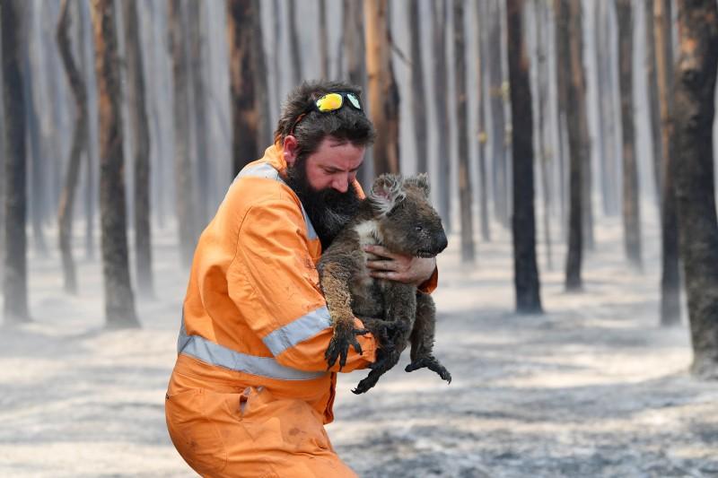 Un año después de los incendios forestales en Australia continúa la inacción climática