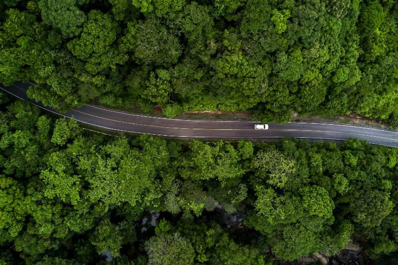6 formas de reducir la contaminación por carbono de la atmósfera