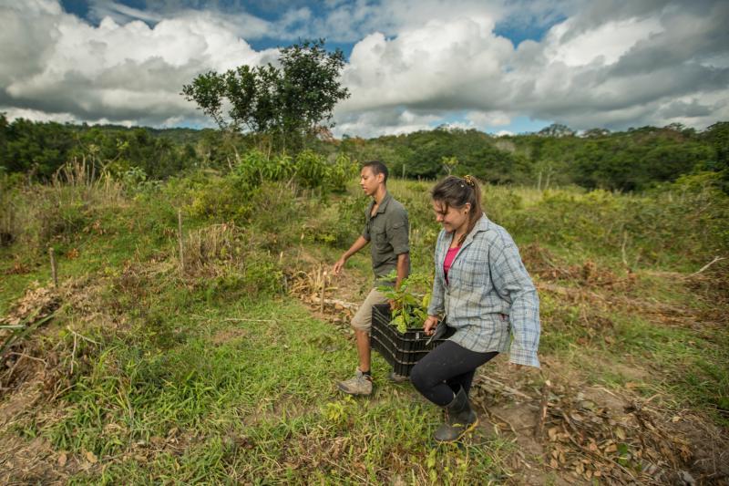 Fondo de la ONU busca usar la naturaleza para adaptarse a la crisis climática