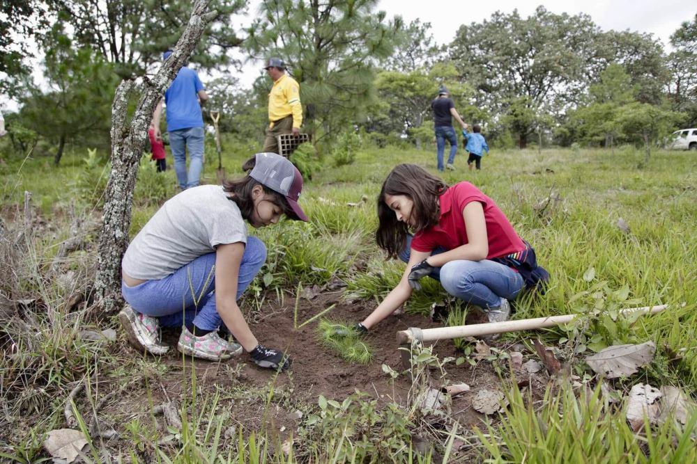 Campaña de reforestación en Jalisco, México - Foto por Gobierno del Estado de Jalisco
