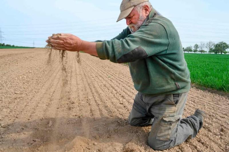 Europa sufres sus peores sequías en 2,000 años