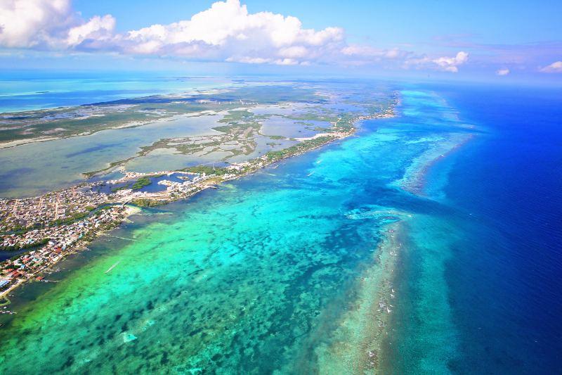 Tecnología inteligente de Australia ayuda a conservar los arrecifes de coral